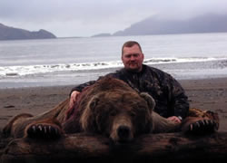 Large Bear - Hunting Alaska